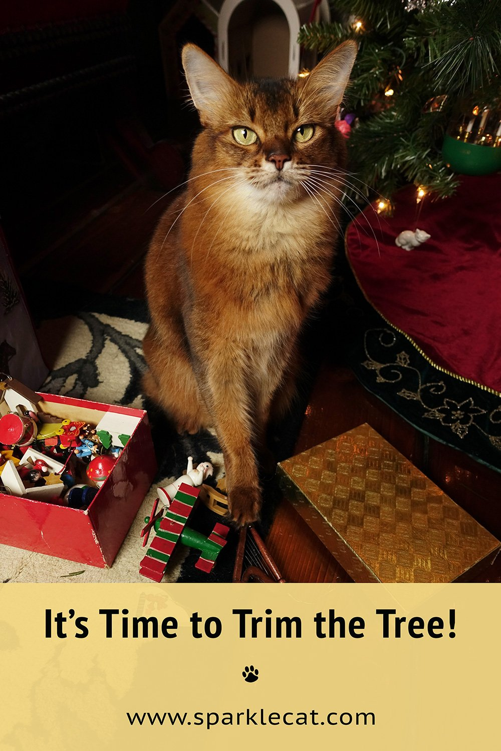It\'s Time to Trim the Tree