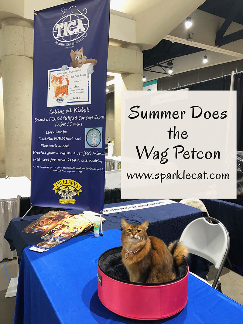 Summer works the TICA booth at the WAG Petcon and has a fun time!