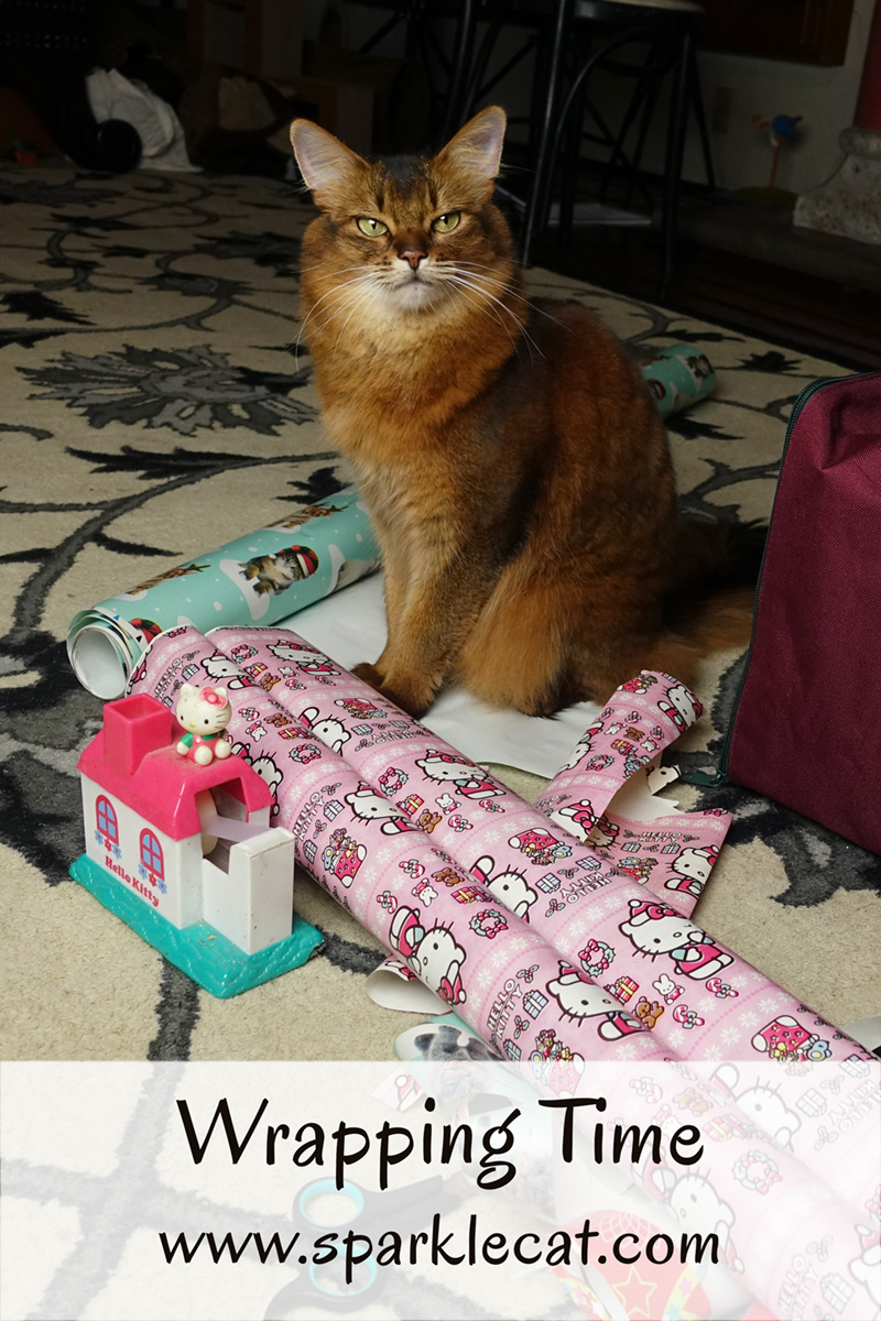 Summer helps her human with the Christmas wrapping.
