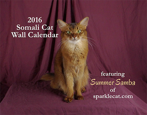 Summer's Regular 2016 Wall calendar