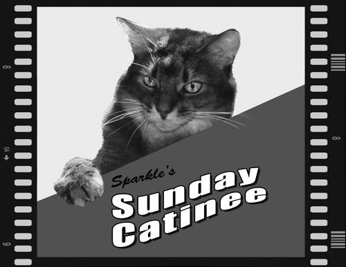 Sparkle's Sunday Catinee