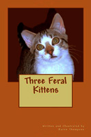 Three Feral Kittens by Karen Thompson