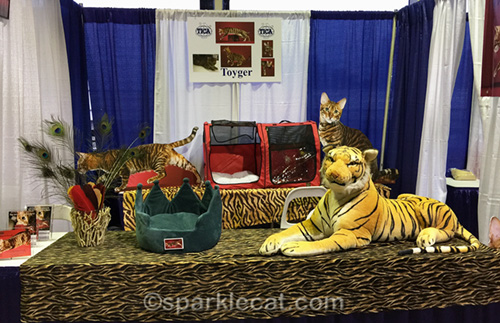 toyger booth at Meet the Breeds 2018