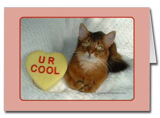 U R Cool Kitty Card
