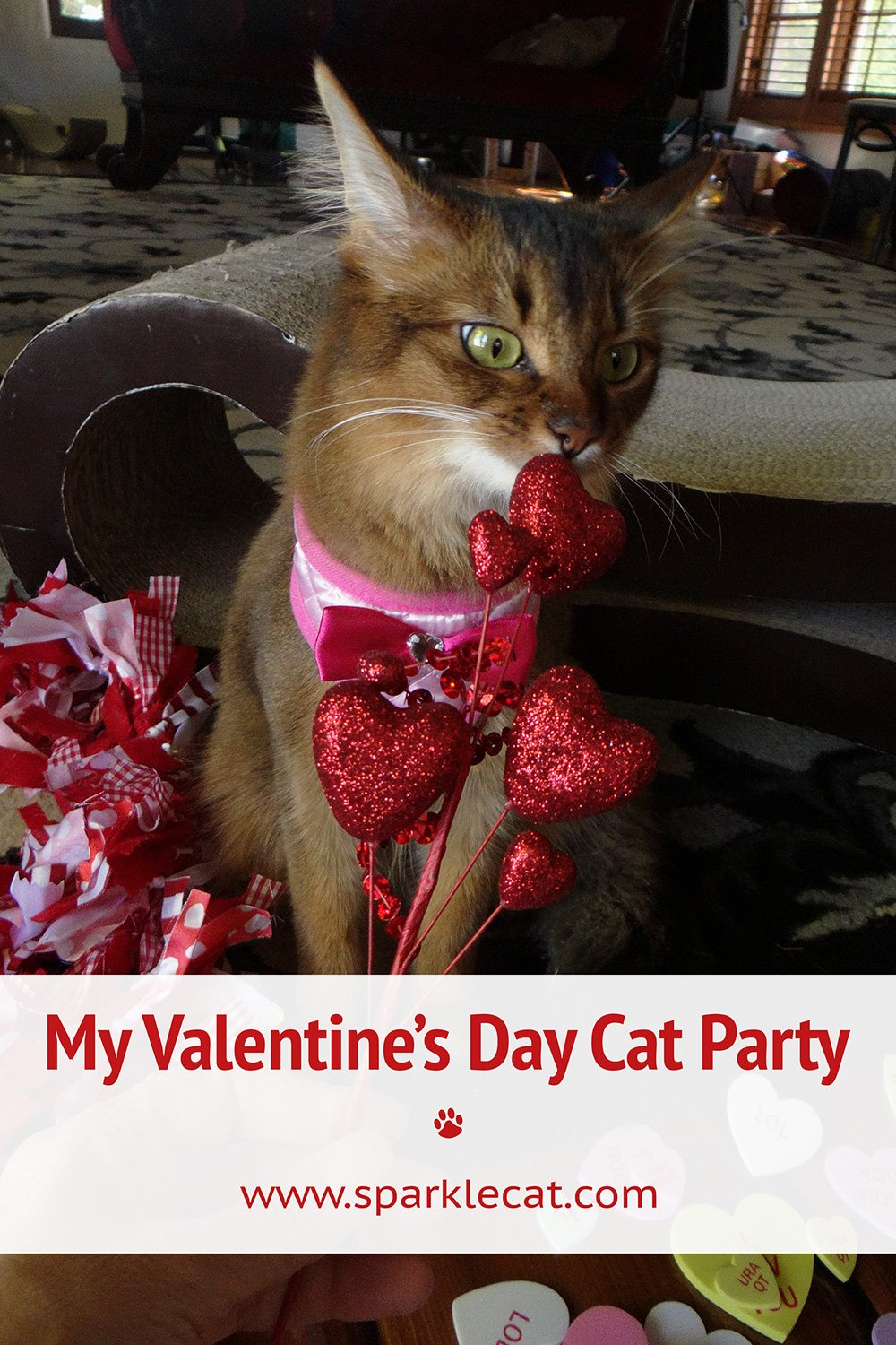 My Valentine\'s Day Party