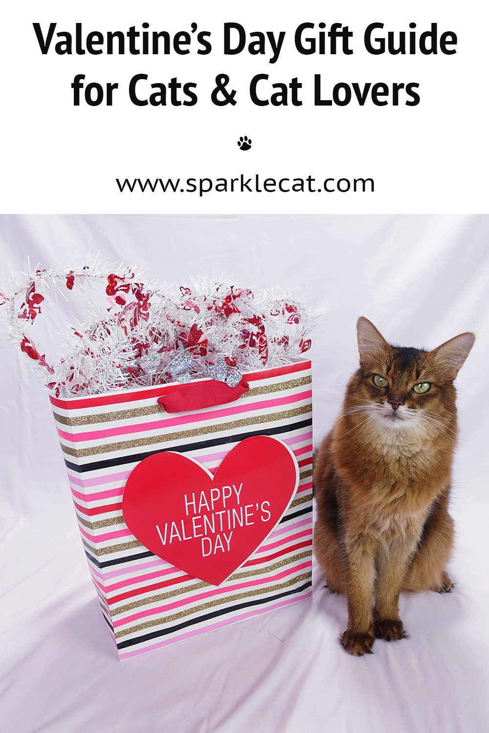 Valentine\'s Day Gift Guide for Cats and Cat Lovers From Etsy - 2021 Edition