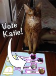 Vote Katie Today!