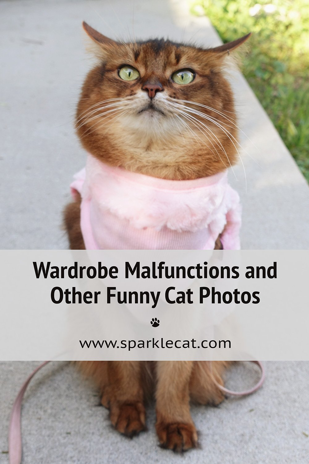 Wardrobe Malfunctions and Other Outtakes
