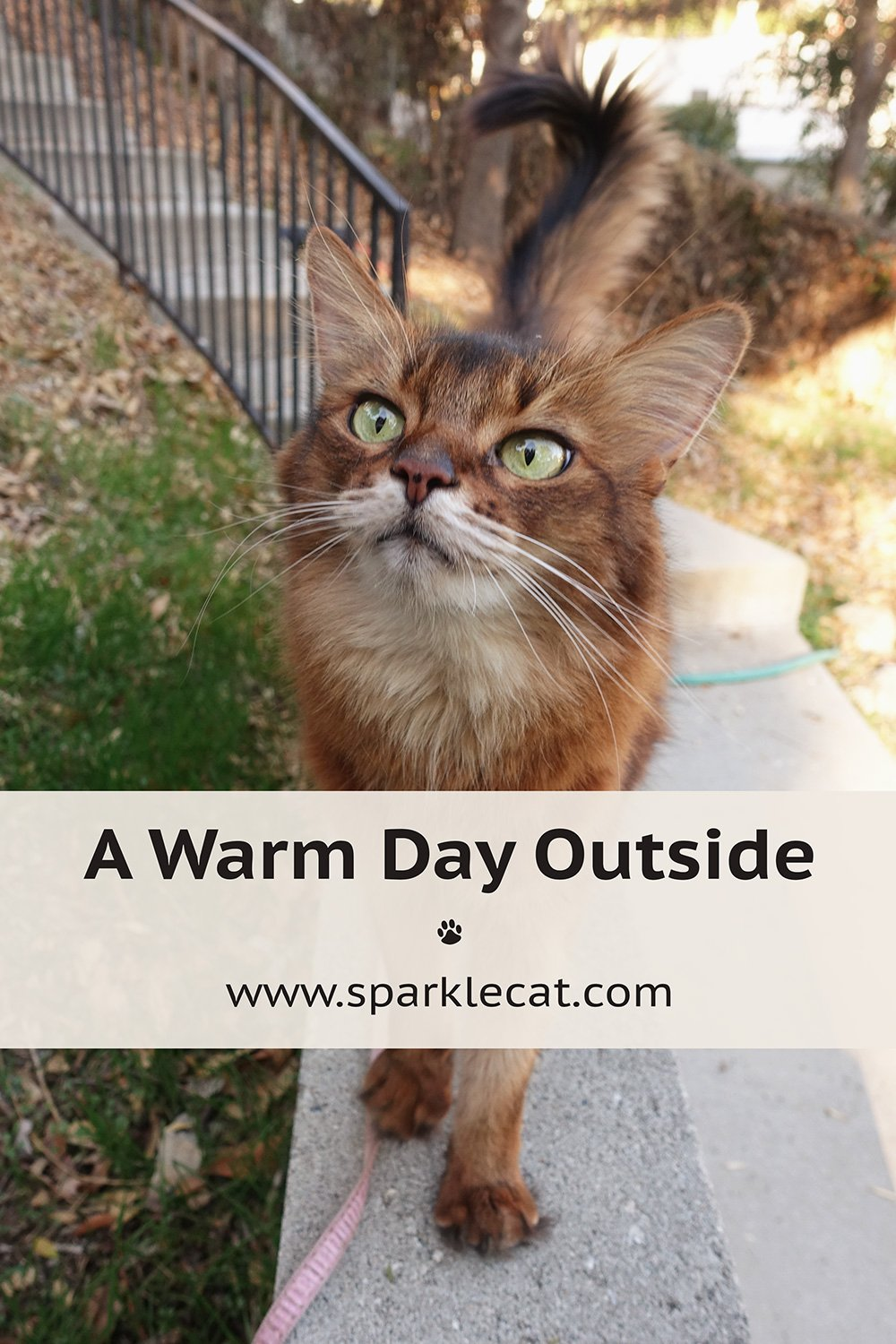 A Warm Day Outside