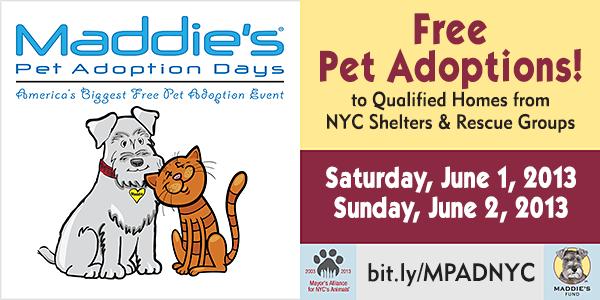 Maddie's Pet Adoption Days